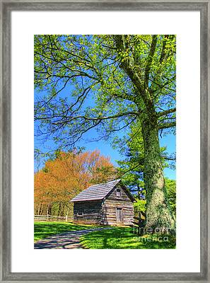 Puckett's Cabin Framed Print by Paul Johnson