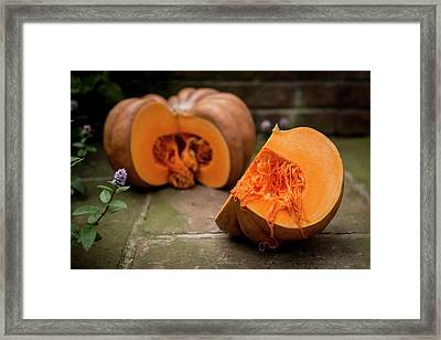 Pumpkin Framed Print by Aberration Films Ltd