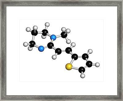 Pyrantel Antinematodal Drug Molecule Framed Print