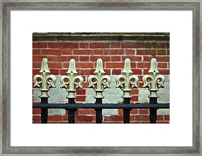 Railings Framed Print