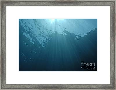 Rays Of Sunlight Shining Into Water Framed Print by Sami Sarkis