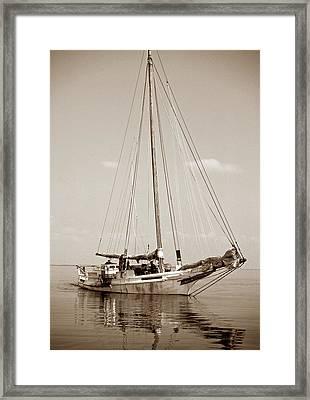 Rebecca T Ruark Framed Print by Skip Willits