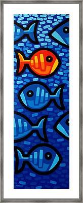 Rebel Fish II Framed Print by John  Nolan