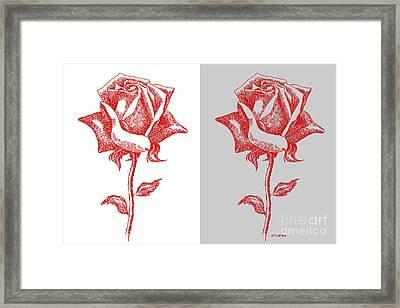 2 Red Roses Poster Framed Print