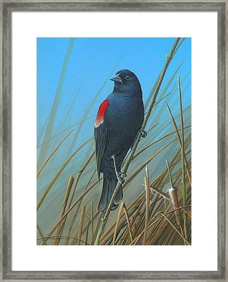 Framed Print featuring the painting Red-winged Black Bird by Mike Brown