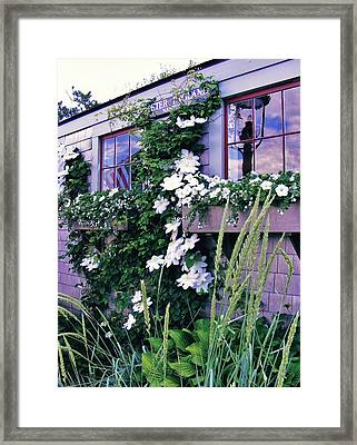 Reflections Framed Print by James McAdams