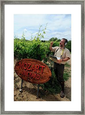 Research On Plant Response To Sound Framed Print by Quincy Russell, Mona Lisa Production
