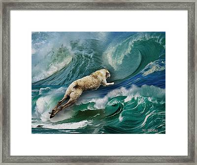 Rex Thinks He's A Dolphin Framed Print