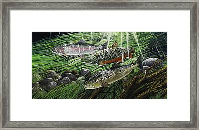 River Gems Framed Print by Juan Jose Serra