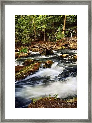 River Rapids Framed Print by Elena Elisseeva