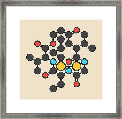 Romidepsin Cancer Drug Molecule Framed Print by Molekuul