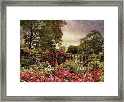 Rose Garden Trellis Framed Print by Jessica Jenney