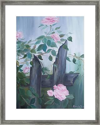 Roses Framed Print by Glenda Barrett