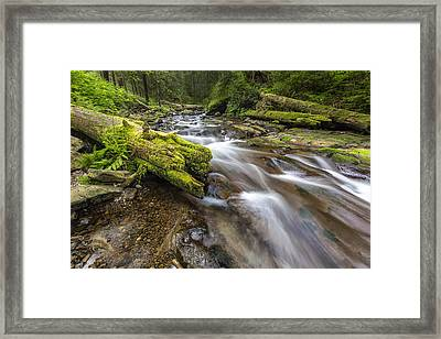Rush Rush Framed Print by Jon Glaser