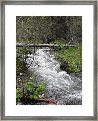 Rushing River Framed Print by Yvette Pichette