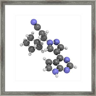 Ruxolitinib Myelofibrosis Cancer Drug Framed Print by Molekuul