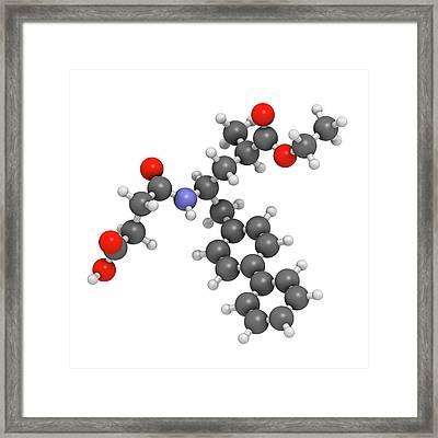 Sacubitril Hypertension Drug Molecule Framed Print by Molekuul