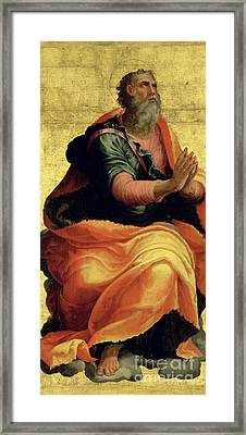 Saint Paul The Apostle Framed Print by Marco Pino