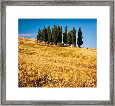 San Quirico D'orcia Framed Print
