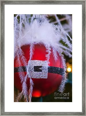 Santa Claus Ornament Framed Print by Birgit Tyrrell
