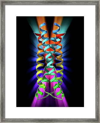 Sars Virus Surface Protein Molecule Framed Print