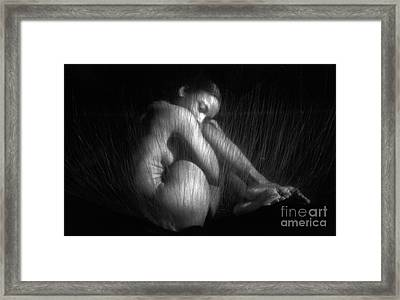 Sas 1 Framed Print by Tony Cordoza