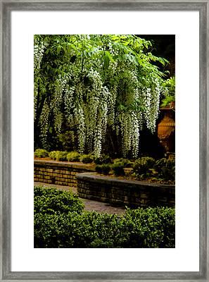 Savannah Courtyard Framed Print by Diana Powell