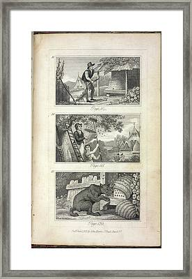 Scenes Of Industry Displayed In The Bee-h Framed Print