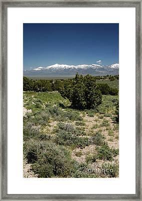 614p Schell Creek Range Nv Framed Print