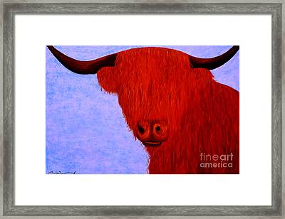 Scottish Highlands Cow Framed Print