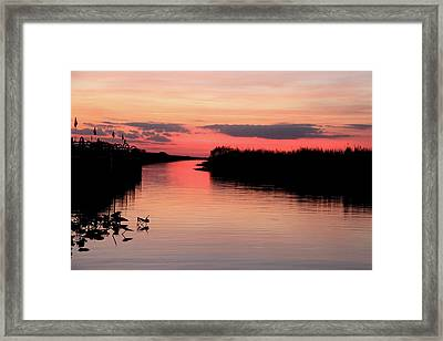 Seeking The Moment Framed Print by AR Annahita