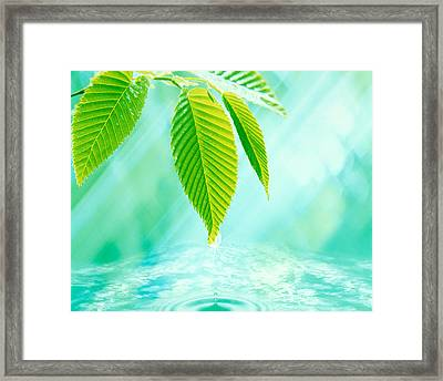 Selective Focus Close Up Of Green Framed Print