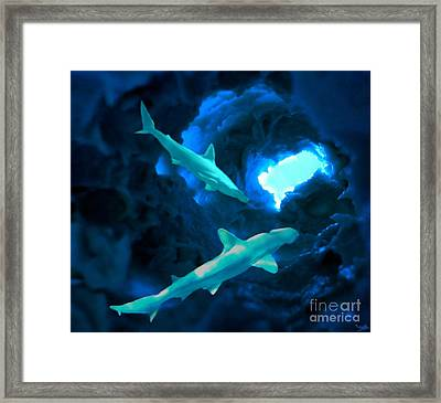 Framed Print featuring the mixed media Shark Cave by Steed Edwards