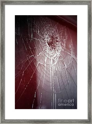 Shattered Dreams Framed Print by Trish Mistric