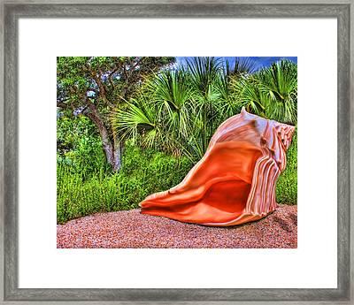 Shell Attack Framed Print