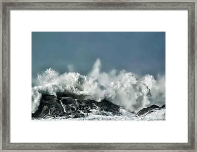 Shore Acres 7 Framed Print