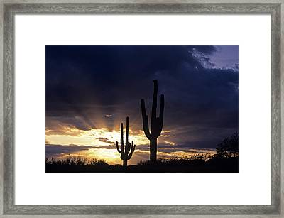 Silhouetted Saguaro Cactus Sunset At Dusk Arizona State Usa Framed Print