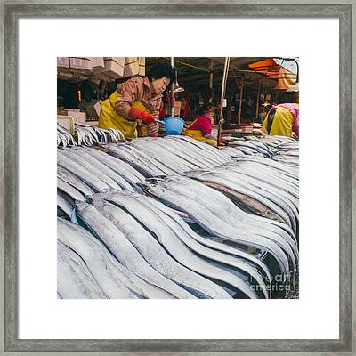 Silver Scabbard In Korea Busan Market Framed Print by Tuimages