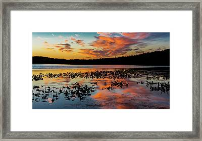 Skilak Lake, Alaska, The Aleutian Framed Print