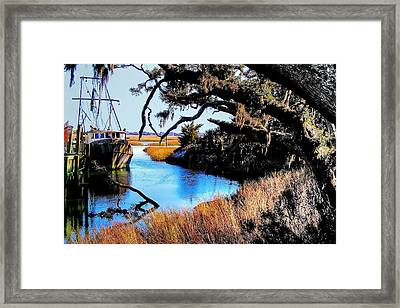 Sleeping Shrimper Framed Print