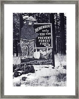 Smokey The Bear Framed Print
