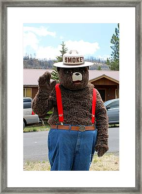Smokey The Bear Framed Print