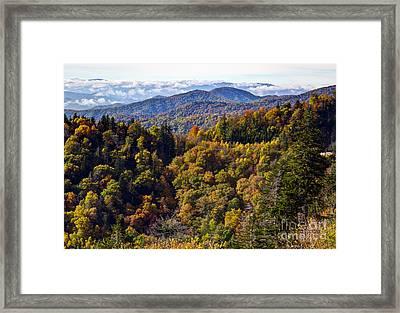 Smoky Mountain Color II Framed Print by Douglas Stucky