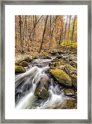 Smoky Mountain Stream 2 Framed Print
