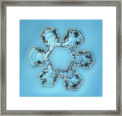 Snowflake Crystal Framed Print by Gerd Guenther