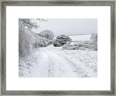 Snowy Landscape, Dorset Framed Print by Adrian Bicker