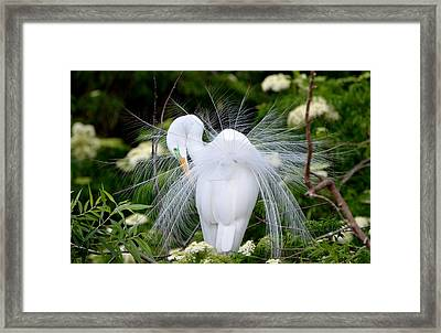 So Pretty Framed Print