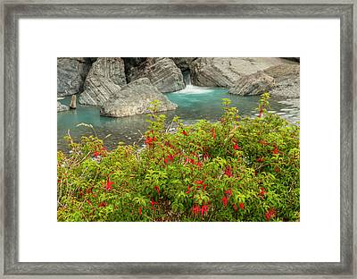 South America, Chile, Patagonia Framed Print