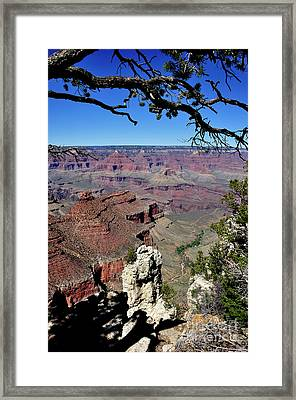 South Rim Of The Grand Canyon Framed Print by Thomas R Fletcher