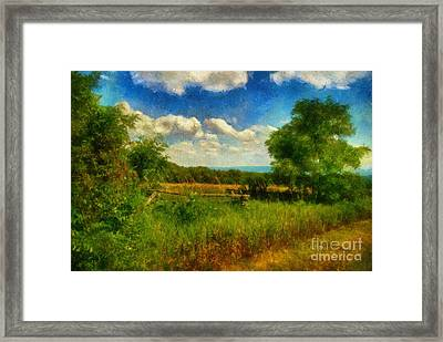 Split Rail Fence Framed Print